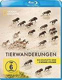 National Geographic - Das große Wunder der Tierwanderungen: Die komplette Serie + 3 Bonusfolgen [Blu-ray]