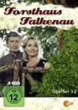Staffel 12 (3 DVDs)
