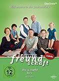 In aller Freundschaft - Staffel 13, Teil 1 (6 DVDs)