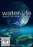 Wasser - Die Wiege des Lebens, Staffel 2 (2 DVDs)