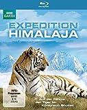 Auf der Fährte der Tiger im Königreich Bhutan [Blu-ray]