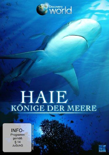 Haie - Könige der Meere