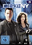 CSI: NY - Season 6 (6 DVDs)