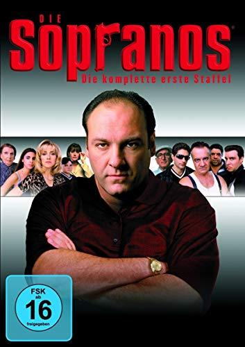 Die Sopranos Staffel 1 (4 DVDs)
