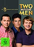 Two and a Half Men - Staffel  8 (2 DVDs)