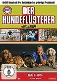 Der Hundeflüsterer - Staffel 1 (6 DVDs)