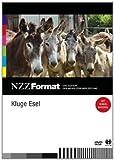 NZZ Format: Kluge Esel