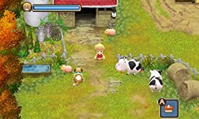 Harvest Moon Tale of Two Towns, Abbildung #02