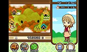 Harvest Moon Tale of Two Towns, Abbildung #03