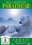 Arktis - Auf den Spuren des Eisbären
