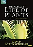 Sir David Attenborough: The Private Life of Plants (Repackaged) (2 DVDs)