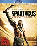 Spartacus: Gods of the Arena - Die komplette Serie [Blu-ray]