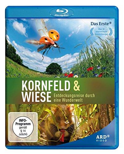 Kornfeld und Wiese - Entdeckungsreise durch eine Wunderwelt [Blu-Ray]