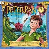 Peter Pan - Neue Abenteuer - Hörspiel, Vol. 3: Die Krankheit Erwachsenung / John, der Held