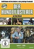 Der Hundeflüsterer - Staffel 4 (5 DVDs)