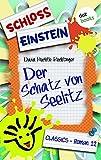 Schloss Einstein 12. Der Schatz von Seelitz. [Kindle Edition]