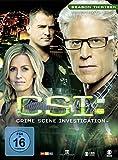 Season 13 / Box-Set 2 (3 DVDs)