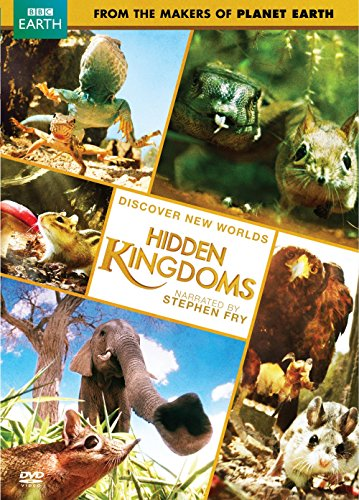 Hidden Kingdom [RC 1]