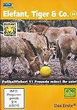 Elefant, Tiger & Co. - Teil 36: Fußballfieber! 11 Freunde müsst ihr sein! (2 DVDs)
