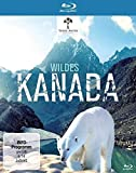 Wildes Kanada [Blu-ray]