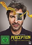 Perception - Staffel 1 (2 DVDs)