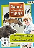 Vol. 9: Wie schlau ist ein Fuchs/Ein Wildschwein zum knuddeln