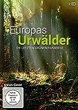 Die letzten grünen Paradiese (2 DVDs)
