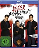 Anger Management - Staffel 4 [Blu-ray]
