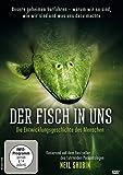 Der Fisch in uns - Die Entwicklungsgeschichte des Menschen