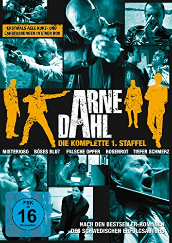 Arne Dahl Staffel 1 (11 DVDs)