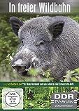 In freier Wildbahn (Wildschwein ehrenhalber) (DDR TV-Archiv) (3 DVDs)