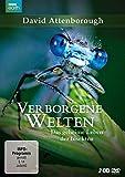 David Attenborough: Verborgene Welten - Das geheime Leben der Insekten (2 DVDs)