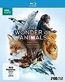 Tierische Überlebenskünstler [Blu-ray]