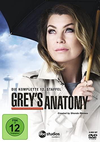 Grey's Anatomy - Die jungen Ärzte: Staffel 12 (6 DVDs)