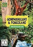 Elefant, Tiger & Co. - Gondwanaland & Pogoland (Jubiläumsausgabe)