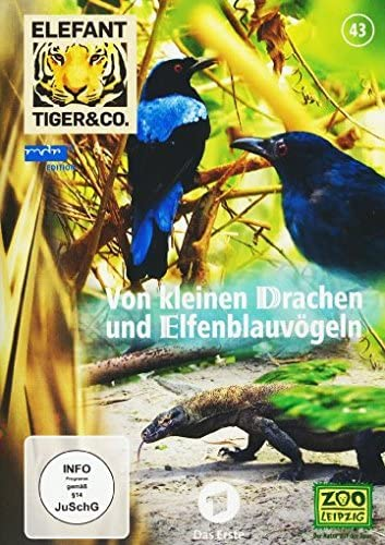 Elefant, Tiger & Co. Teil 43: Von kleinen Drachen und Elfenblauvögeln (2 DVDs)