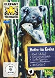 Elefant, Tiger & Co. - Teil 44: Mathe für Koalas (2 DVDs)