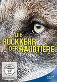 Die Rückkehr der Raubtiere: Wolf, Luchs und Bär auf dem Vormarsch