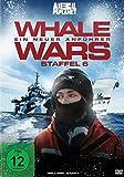 Whale Wars - Ein neuer Anführer - Staffel 6 (2 DVDs)
