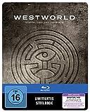 Staffel 1: Das Labyrinth (Limited Steelbook Edition) (exklusiv bei Amazon.de) [Blu-ray]