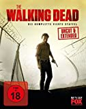 The Walking Dead - Staffel 4 (Uncut) [Blu-ray]
