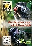 Elefant, Tiger & Co. - Teil 47: Gut Kirschen essen mit Lili und Salik (2 DVDs)