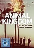 Animal Kingdom - Staffel 1 (3 DVDs)