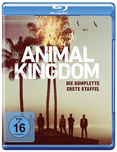 Animal Kingdom - Staffel 1 [Blu-ray]