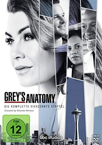 Grey's Anatomy - Die jungen Ärzte: Staffel 14 (6 DVDs)