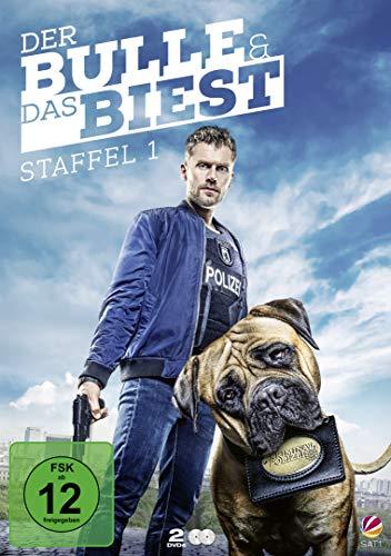 Der Bulle und das Biest Staffel 1 (2 DVDs)