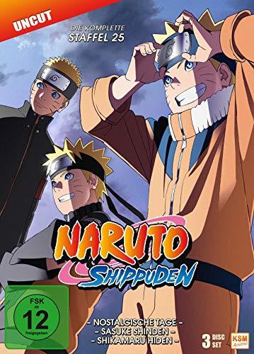 Naruto Shippuden Staffel 25 (3 DVDs)