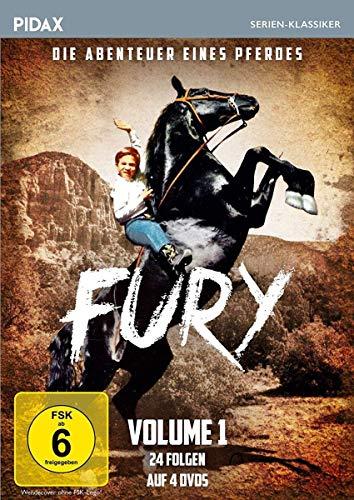 Fury - Die Abenteuer eines Pferdes, Vol. 1 (4 DVDs)