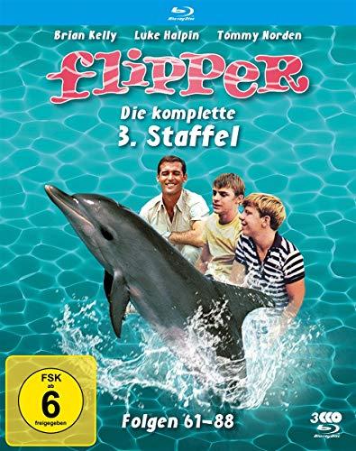 Flipper Staffel 3 [Blu-ray]