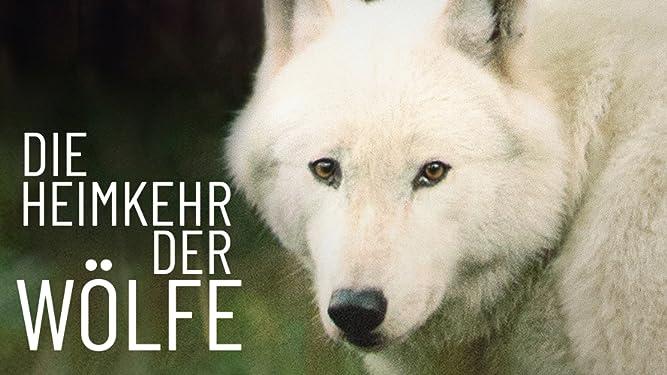 Die Heimkehr der Wölfe